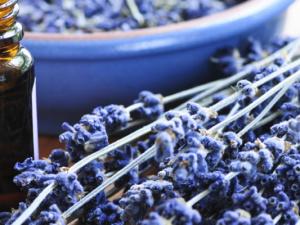 přírodní recepty byliny a padání vlasů