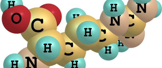 Aminokyseliny dodávají vlasům pevnost a krásu